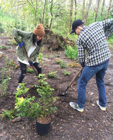 The rain started around 12:30 p.m. on Earth Day, but the volunteers kept planting native shrubs and trees at Everett Crowley Park.