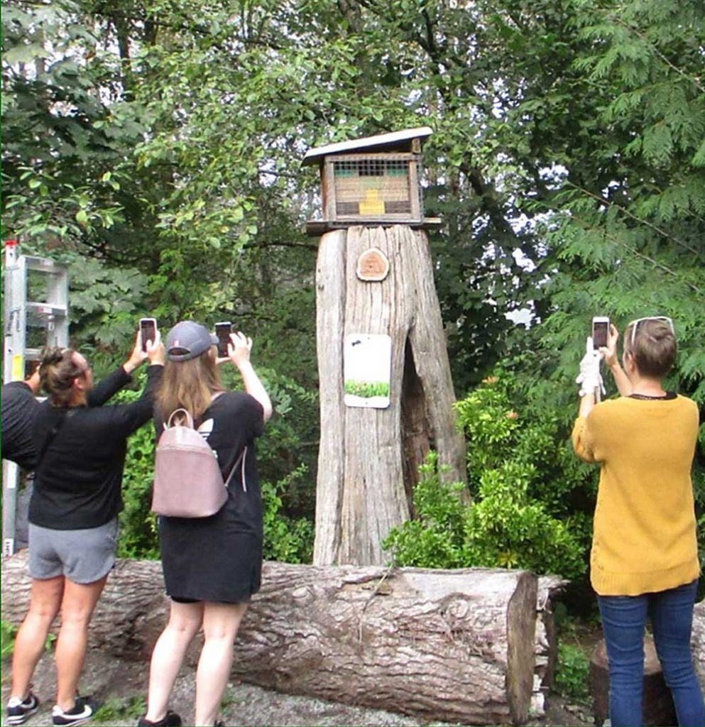 """Photo op of """"bee hotel"""" just before Silva Hagen and helpers removed the bees for winter """"hibernation"""". Pictured under the """"bee hotel"""" is the Memorial plaque for long time bee helper, Ronald G. Corbett July 22,1943-Oct 6, 2019 """"Volunteer Extraordinaire-He loved this park and worked tirelessly to protect it""""."""