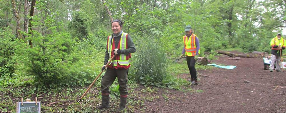 Volunteer Park Stewards Kim, Lesley and David physically distancing while working together on May 23, 2020 during ECPC's small group spring invasives plant removal